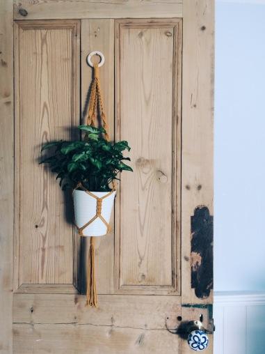 Gorgeous plant hanger from Ola Fala Studio